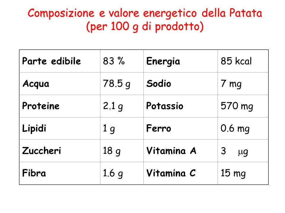 Composizione e valore energetico della Patata (per 100 g di prodotto) Parte edibile83 %Energia85 kcal Acqua78.5 gSodio7 mg Proteine2.1 gPotassio570 mg Lipidi1 gFerro0.6 mg Zuccheri18 gVitamina A3  g Fibra1.6 gVitamina C15 mg