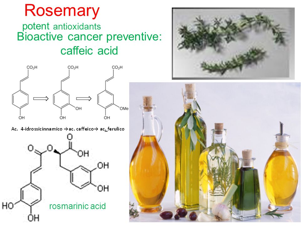 Rosemary potent antioxidants Bioactive cancer preventive: caffeic acid rosmarinic acid