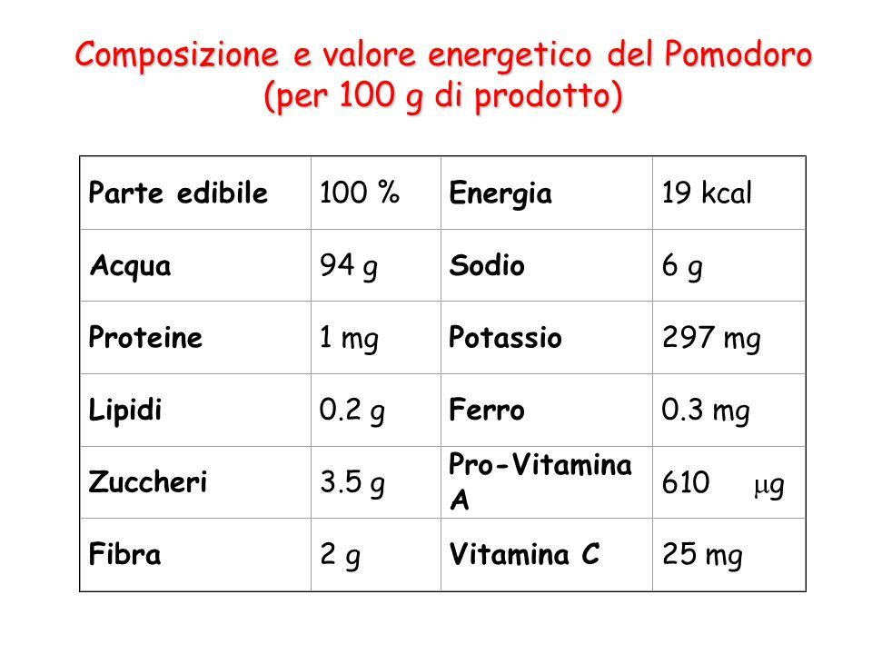Composizione e valore energetico del Pomodoro (per 100 g di prodotto) Parte edibile100 %Energia19 kcal Acqua94 gSodio6 g Proteine1 mgPotassio297 mg Lipidi0.2 gFerro0.3 mg Zuccheri3.5 g Pro-Vitamina A 610  g Fibra2 gVitamina C25 mg