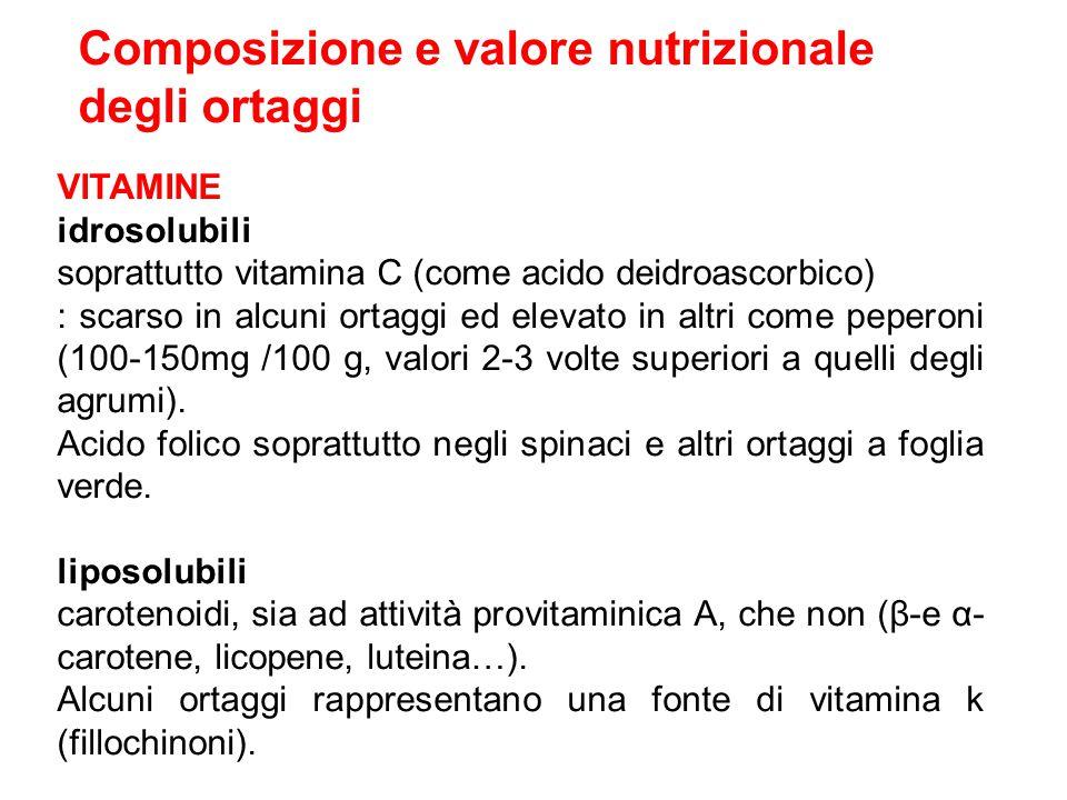 Composizione e valore nutrizionale degli ortaggi VITAMINE idrosolubili soprattutto vitamina C (come acido deidroascorbico) : scarso in alcuni ortaggi ed elevato in altri come peperoni (100-150mg /100 g, valori 2-3 volte superiori a quelli degli agrumi).