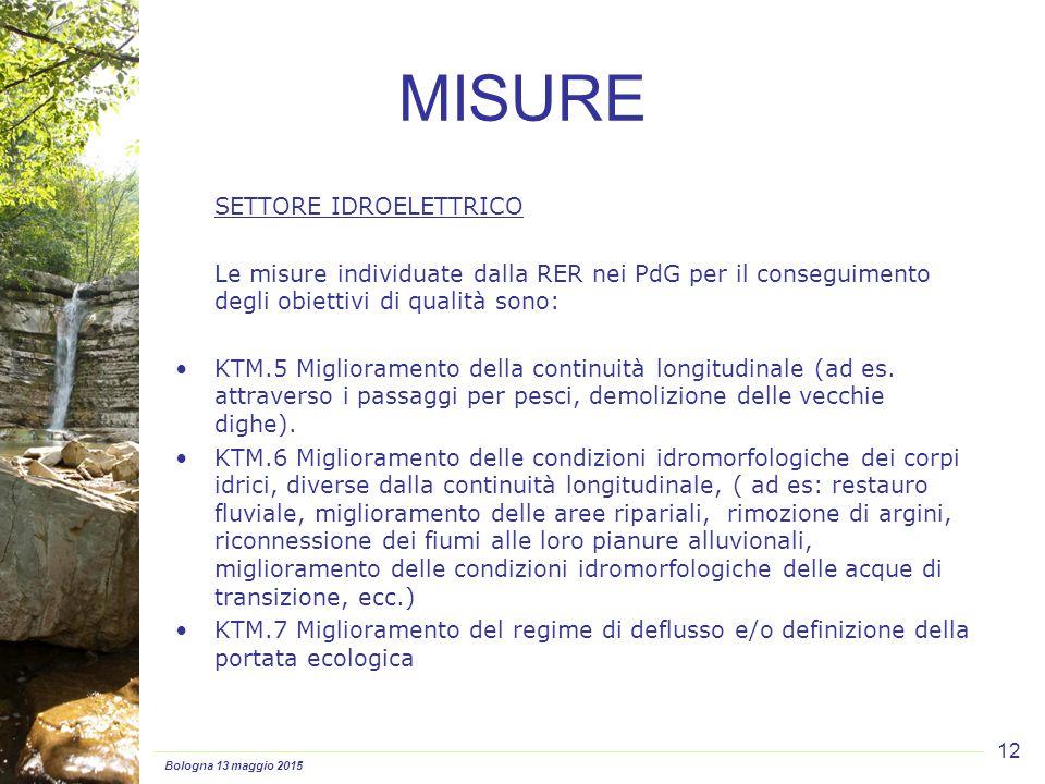 Bologna 13 maggio 2015 12 SETTORE IDROELETTRICO Le misure individuate dalla RER nei PdG per il conseguimento degli obiettivi di qualità sono: KTM.5 Miglioramento della continuità longitudinale (ad es.