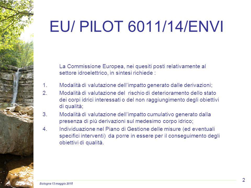 Bologna 13 maggio 2015 2 EU/ PILOT 6011/14/ENVI La Commissione Europea, nei quesiti posti relativamente al settore idroelettrico, in sintesi richiede : 1.Modalità di valutazione dell'impatto generato dalle derivazioni; 2.Modalità di valutazione del rischio di deterioramento dello stato dei corpi idrici interessati o del non raggiungimento degli obiettivi di qualità; 3.Modalità di valutazione dell'impatto cumulativo generato dalla presenza di più derivazioni sul medesimo corpo idrico; 4.Individuazione nel Piano di Gestione delle misure (ed eventuali specifici interventi) da porre in essere per il conseguimento degli obiettivi di qualità.