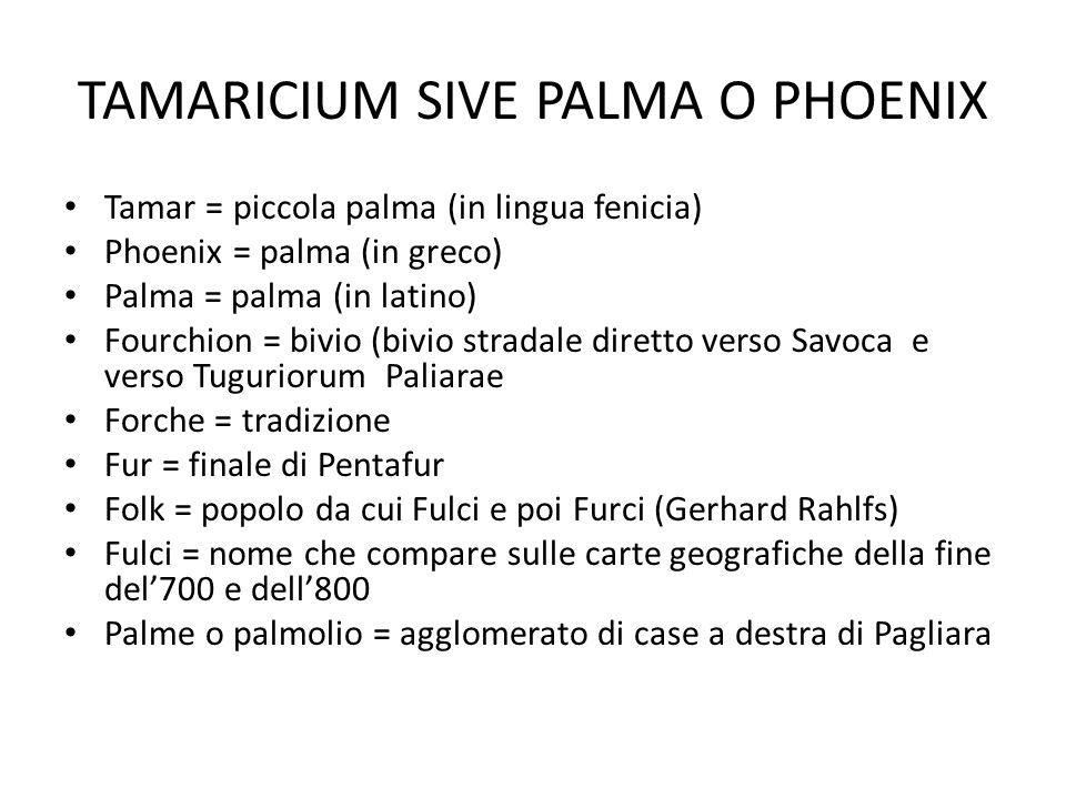 TAMARICIUM SIVE PALMA O PHOENIX Tamar = piccola palma (in lingua fenicia) Phoenix = palma (in greco) Palma = palma (in latino) Fourchion = bivio (bivi