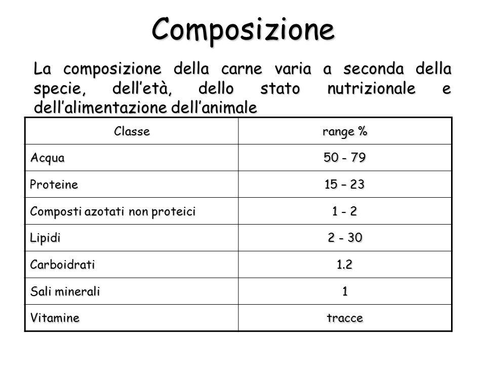 La composizione della carne varia a seconda della specie, dell'età, dello stato nutrizionale e dell'alimentazione dell'animale Composizione Classe ran