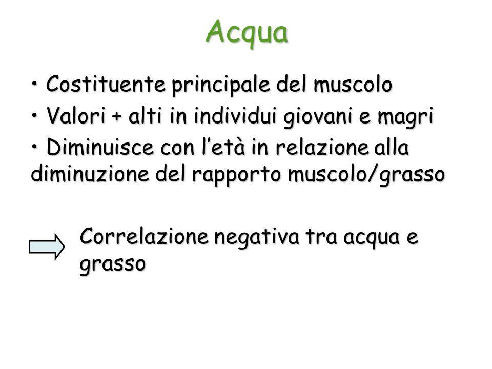 Acqua Costituente principale del muscolo Costituente principale del muscolo Valori + alti in individui giovani e magri Valori + alti in individui giov