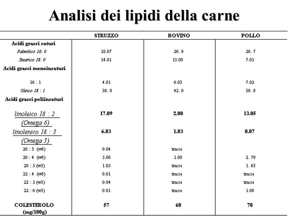 Analisi dei lipidi della carne
