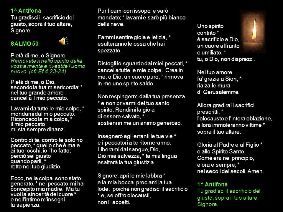 31 LUGLIO 2015 VENERDÌ - I SETTIMANA DEL SALTERIO DEL T.