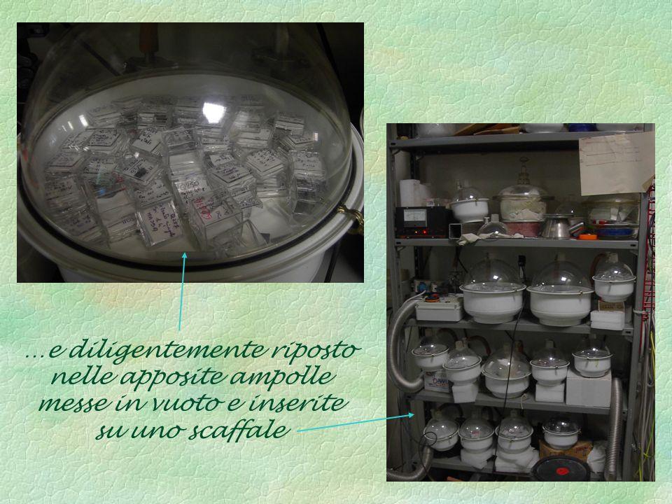 …e diligentemente riposto nelle apposite ampolle messe in vuoto e inserite su uno scaffale