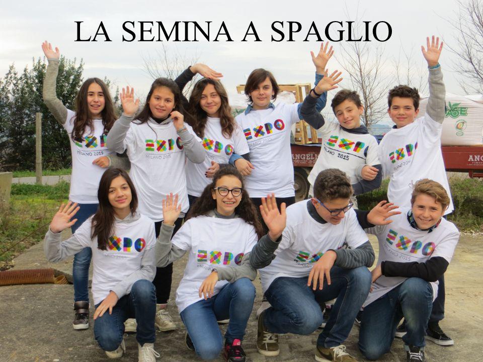 Quest anno, proprio in Italia, si sta allestendo l EXPO e anche la mia scuola vi parteciper à con un progetto in collaborazione con il MIUR dal titolo Terre nostre .