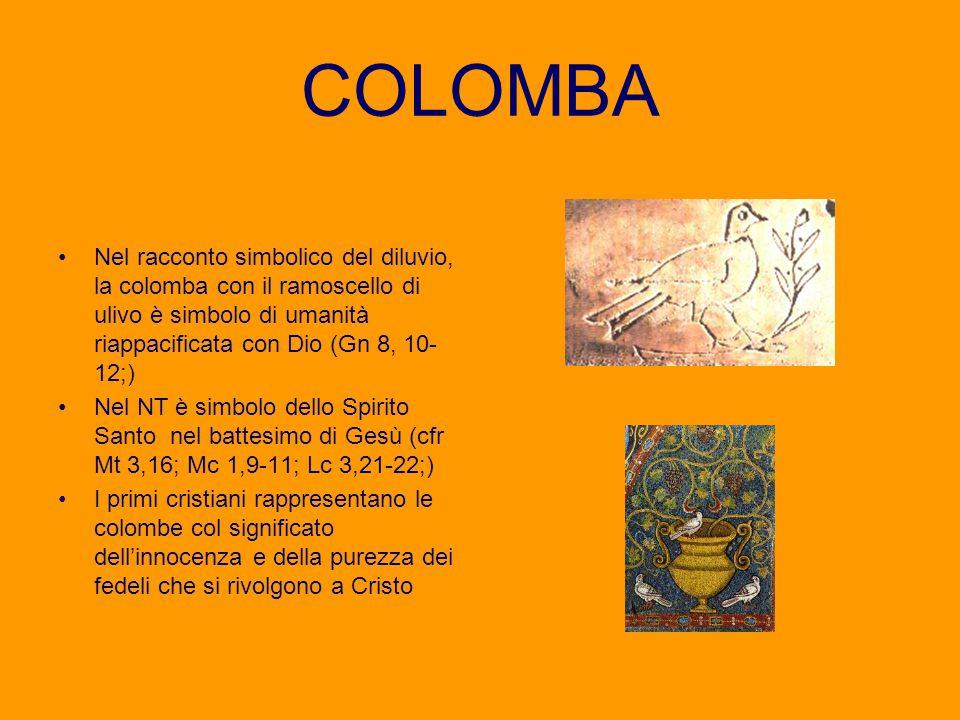 COLOMBA Nel racconto simbolico del diluvio, la colomba con il ramoscello di ulivo è simbolo di umanità riappacificata con Dio (Gn 8, 10- 12;) Nel NT è