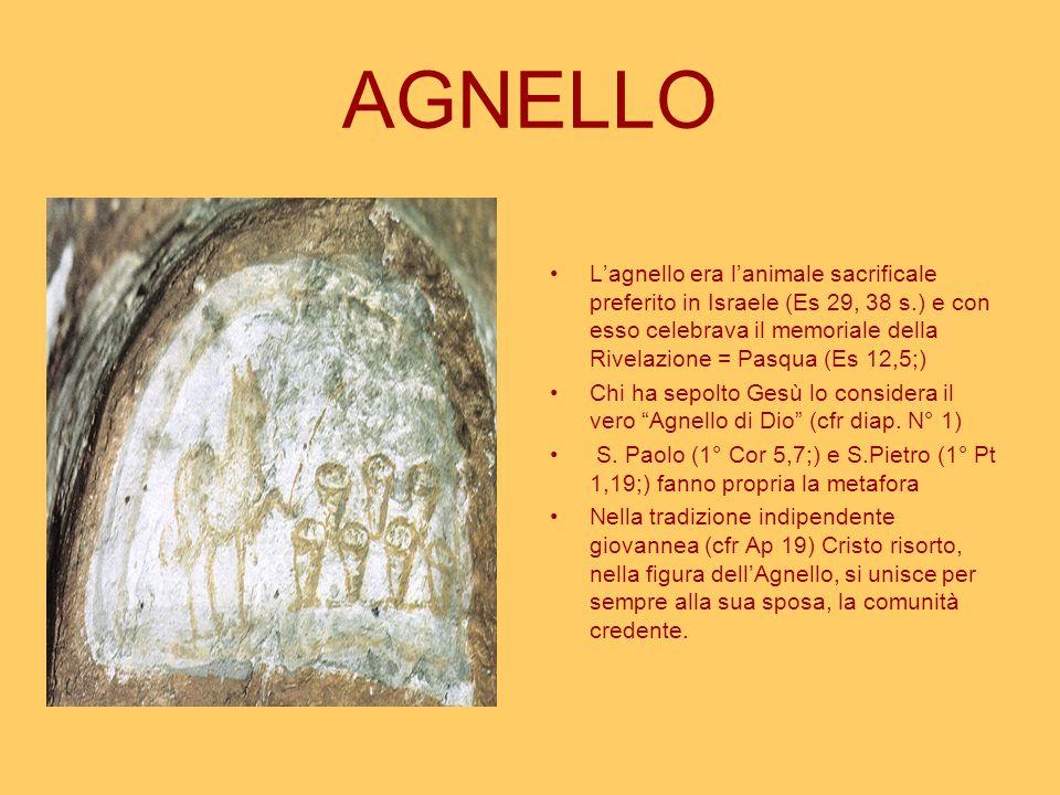 AGNELLO L'agnello era l'animale sacrificale preferito in Israele (Es 29, 38 s.) e con esso celebrava il memoriale della Rivelazione = Pasqua (Es 12,5;