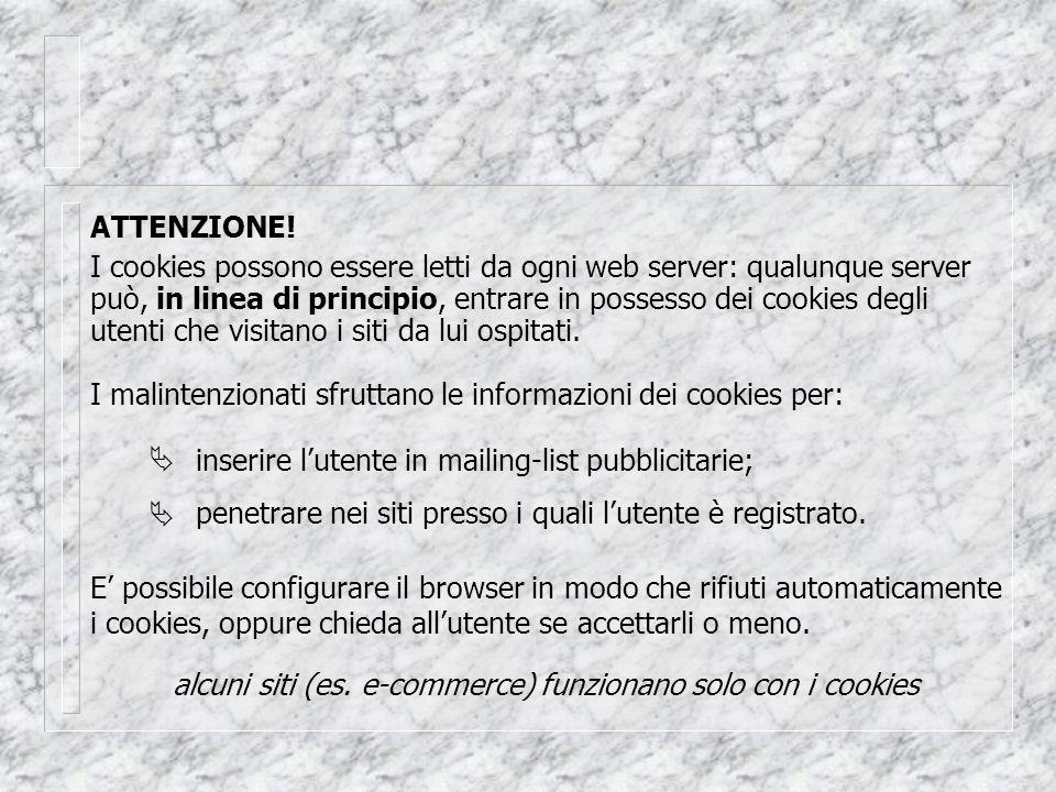 I cookies possono essere letti da ogni web server: qualunque server può, in linea di principio, entrare in possesso dei cookies degli utenti che visitano i siti da lui ospitati.