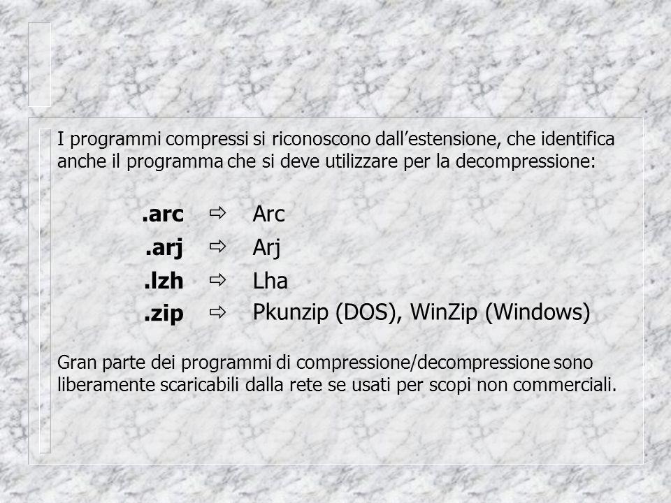 I programmi compressi si riconoscono dall'estensione, che identifica anche il programma che si deve utilizzare per la decompressione:.arjArj.lzhLha.zip Pkunzip (DOS), WinZip (Windows)    Gran parte dei programmi di compressione/decompressione sono liberamente scaricabili dalla rete se usati per scopi non commerciali..arcArc 