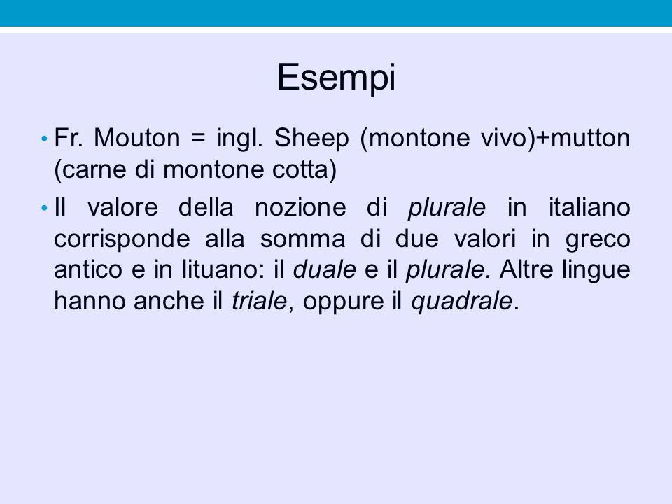 Esempi Fr. Mouton = ingl. Sheep (montone vivo)+mutton (carne di montone cotta) Il valore della nozione di plurale in italiano corrisponde alla somma d
