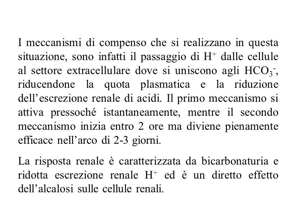 I meccanismi di compenso che si realizzano in questa situazione, sono infatti il passaggio di H + dalle cellule al settore extracellulare dove si unis