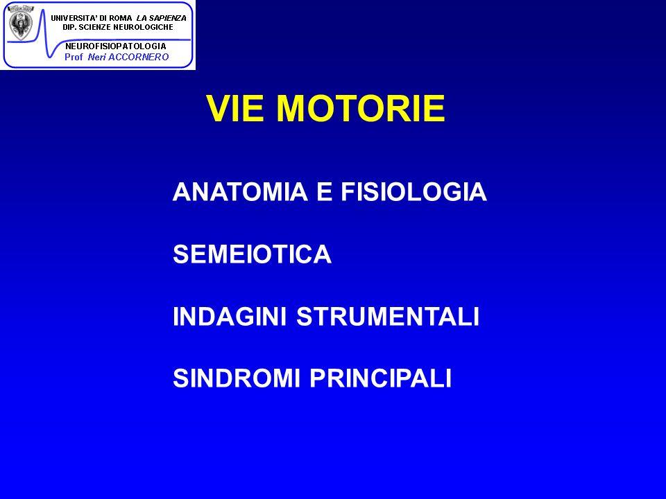 VIE MOTORIE ANATOMIA E FISIOLOGIA SEMEIOTICA INDAGINI STRUMENTALI SINDROMI PRINCIPALI