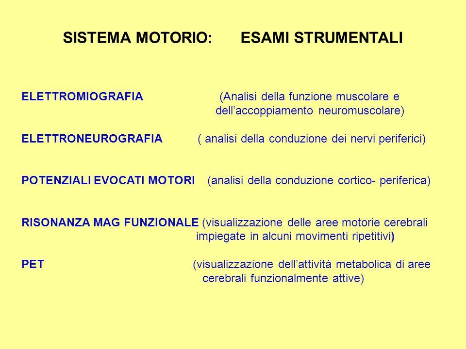 VALUTAZIONE CONTRO RESISTENZA (0,1,2,3,4,5) POSIZIONE DI MINGAZZINI (ARTI SUP E INF) SEMEIOTICA DEL SISTEMA MOTORIO TROFISMO TONO FORZA COORDINAZIONE