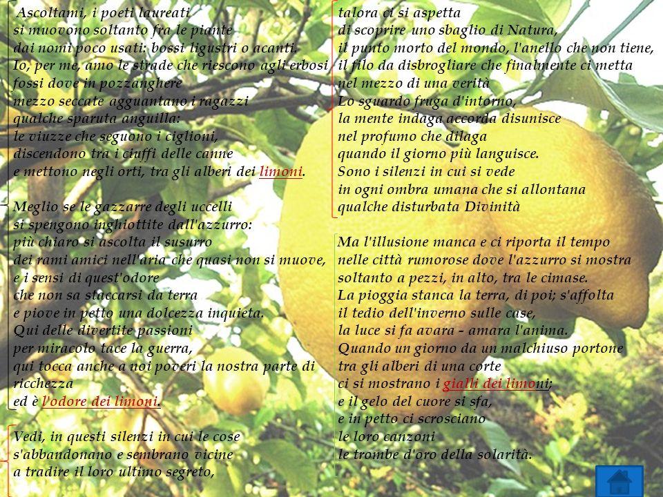 Ascoltami, i poeti laureati si muovono soltanto fra le piante dai nomi poco usati: bossi ligustri o acanti. Io, per me, amo le strade che riescono agl