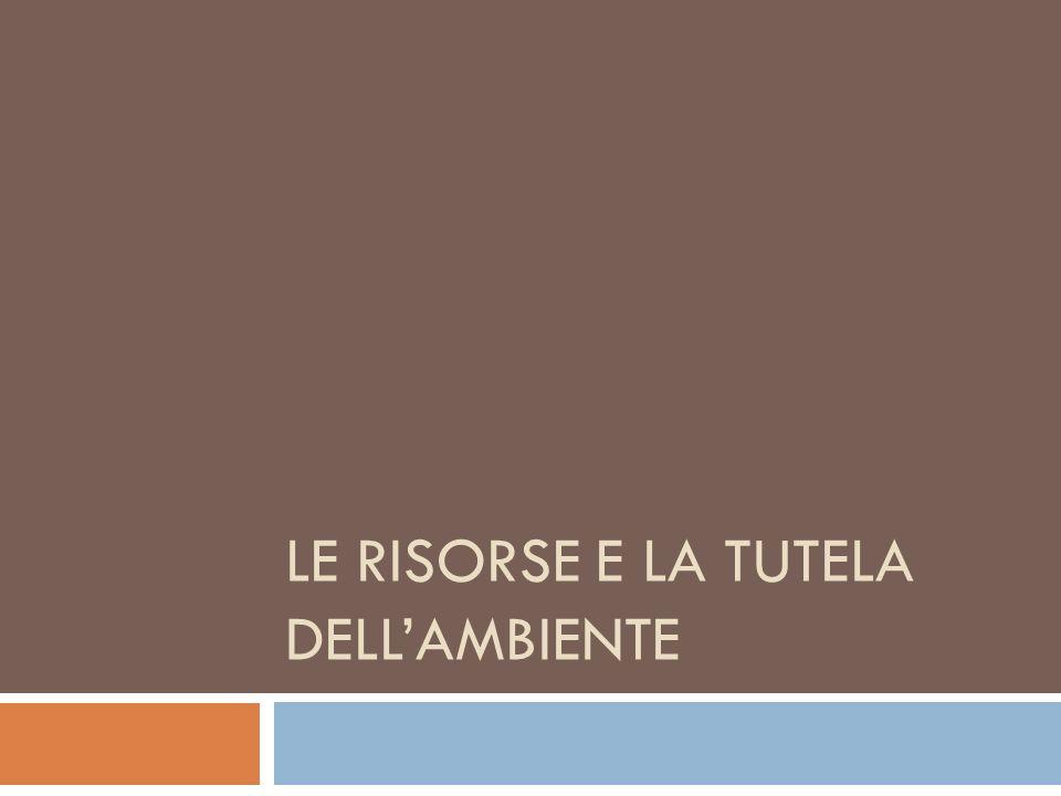 LE RISORSE E LA TUTELA DELL'AMBIENTE