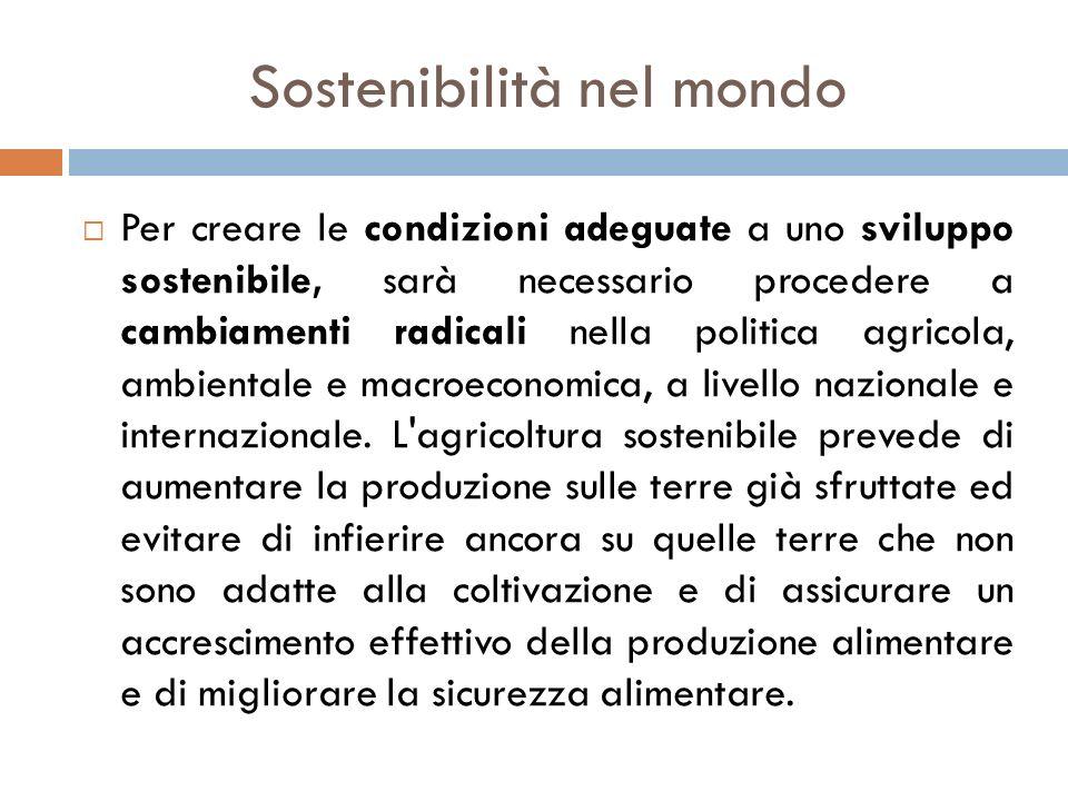Sostenibilità nel mondo  Per creare le condizioni adeguate a uno sviluppo sostenibile, sarà necessario procedere a cambiamenti radicali nella politic