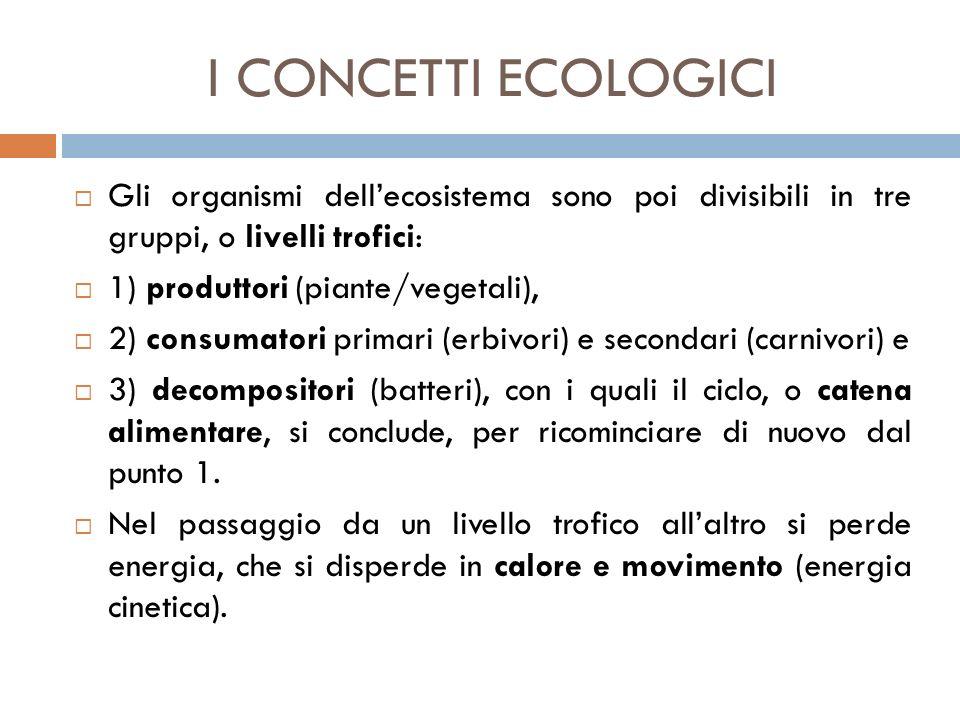 I CONCETTI ECOLOGICI  Gli organismi dell'ecosistema sono poi divisibili in tre gruppi, o livelli trofici:  1) produttori (piante/vegetali),  2) con