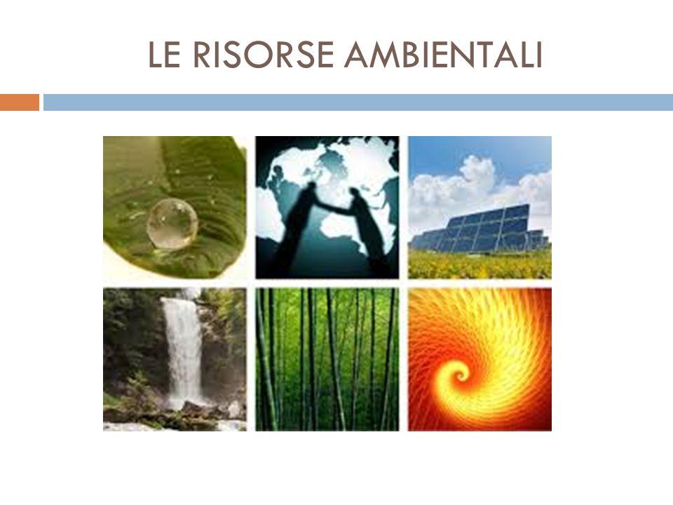LE RISORSE AMBIENTALI