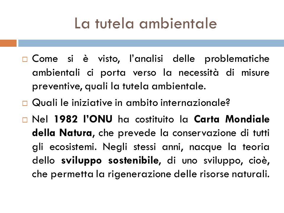 La tutela ambientale  Come si è visto, l'analisi delle problematiche ambientali ci porta verso la necessità di misure preventive, quali la tutela amb