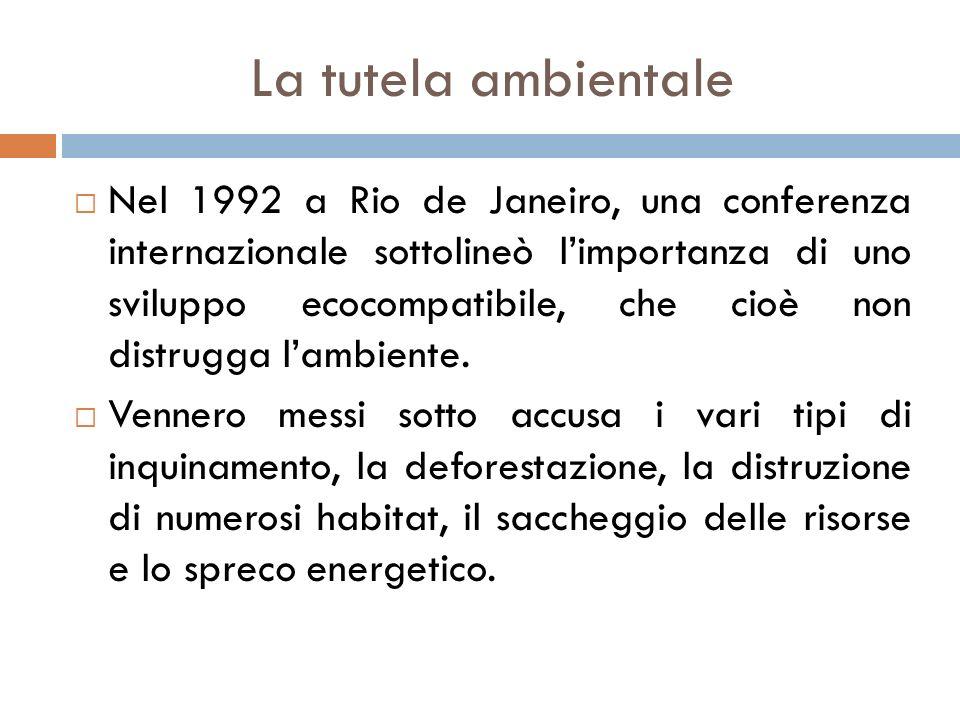 La tutela ambientale  Nel 1992 a Rio de Janeiro, una conferenza internazionale sottolineò l'importanza di uno sviluppo ecocompatibile, che cioè non d