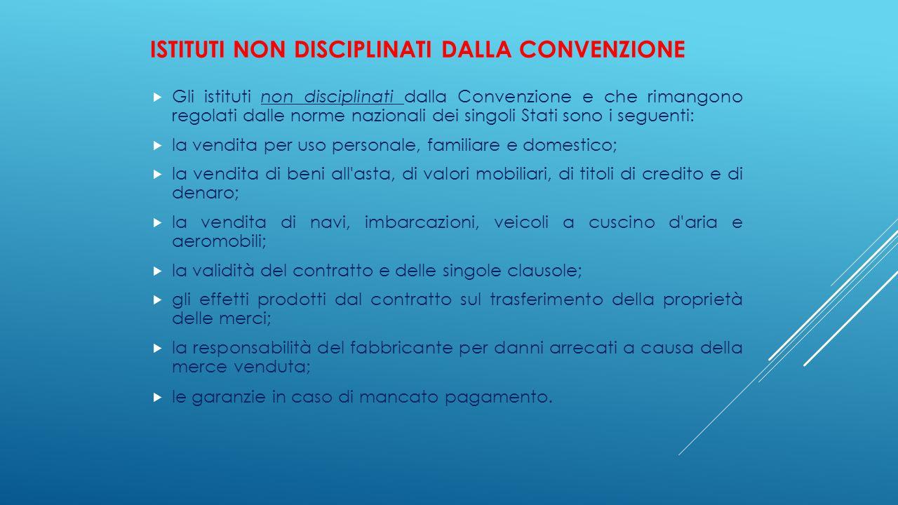 ISTITUTI NON DISCIPLINATI DALLA CONVENZIONE  Gli istituti non disciplinati dalla Convenzione e che rimangono regolati dalle norme nazionali dei singo