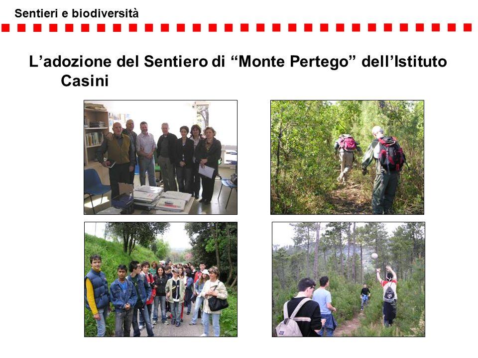 """Sentieri e biodiversità L'adozione del Sentiero di """"Monte Pertego"""" dell'Istituto Casini"""