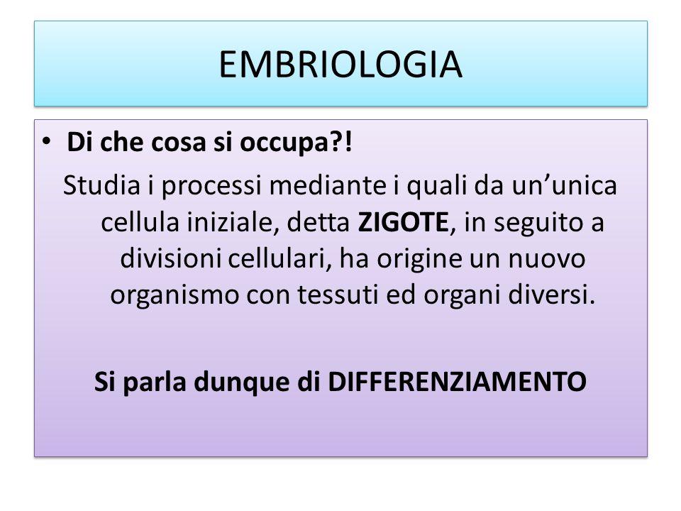 EMBRIOLOGIA Di che cosa si occupa?! Studia i processi mediante i quali da un'unica cellula iniziale, detta ZIGOTE, in seguito a divisioni cellulari, h
