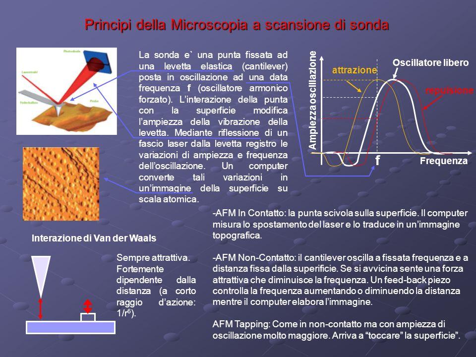 Principi della Microscopia a scansione di sonda Ampiezza oscillazione La sonda e` una punta fissata ad una levetta elastica (cantilever) posta in osci