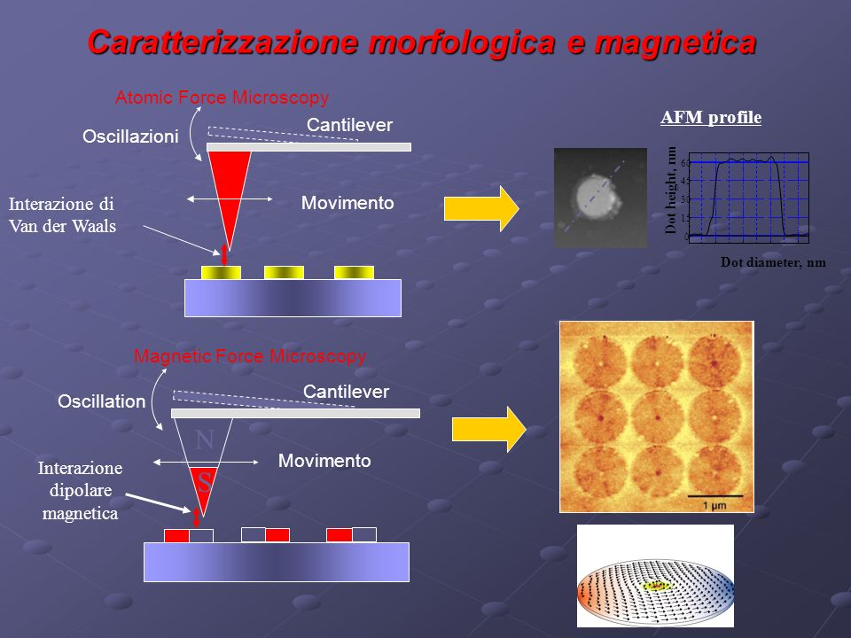 Caratterizzazione morfologica e magnetica Oscillazioni Movimento Cantilever Atomic Force Microscopy Interazione di Van der Waals AFM profile 0 15 30 45 60 Dot height, nm Dot diameter, nm Interazione dipolare magnetica Oscillation Movimento Cantilever Magnetic Force Microscopy N S
