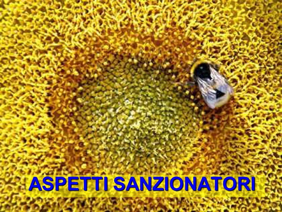 Bologna, 19 Maggio 2009 ASPETTI SANZIONATORI