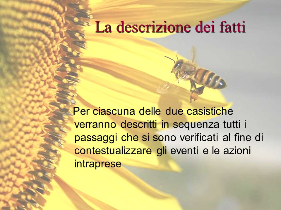 Bologna, 19 Maggio 2009 La descrizione dei fatti Per ciascuna delle due casistiche verranno descritti in sequenza tutti i passaggi che si sono verific