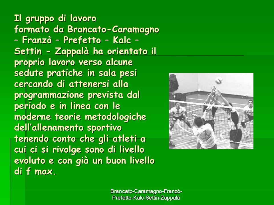 Brancato-Caramagno-Franzò- Prefetto-Kalc-Settin-Zappalà Il gruppo di lavoro formato da Brancato-Caramagno – Franzò – Prefetto – Kalc – Settin - Zappal