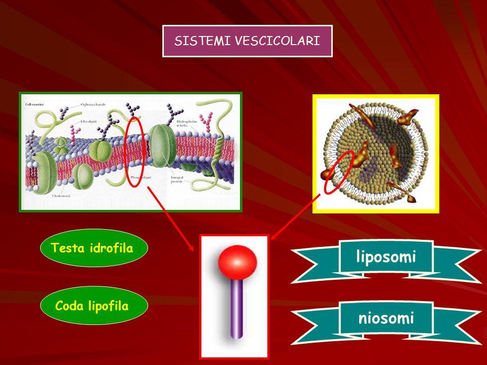 SISTEMI VESCICOLARI Testa idrofila Coda lipofila liposomi niosomi