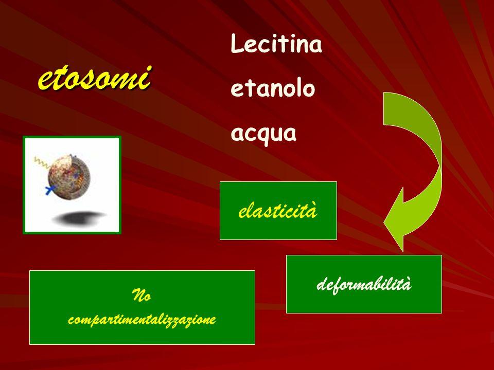 etosomi Lecitina etanolo acqua elasticità deformabilità No compartimentalizzazione