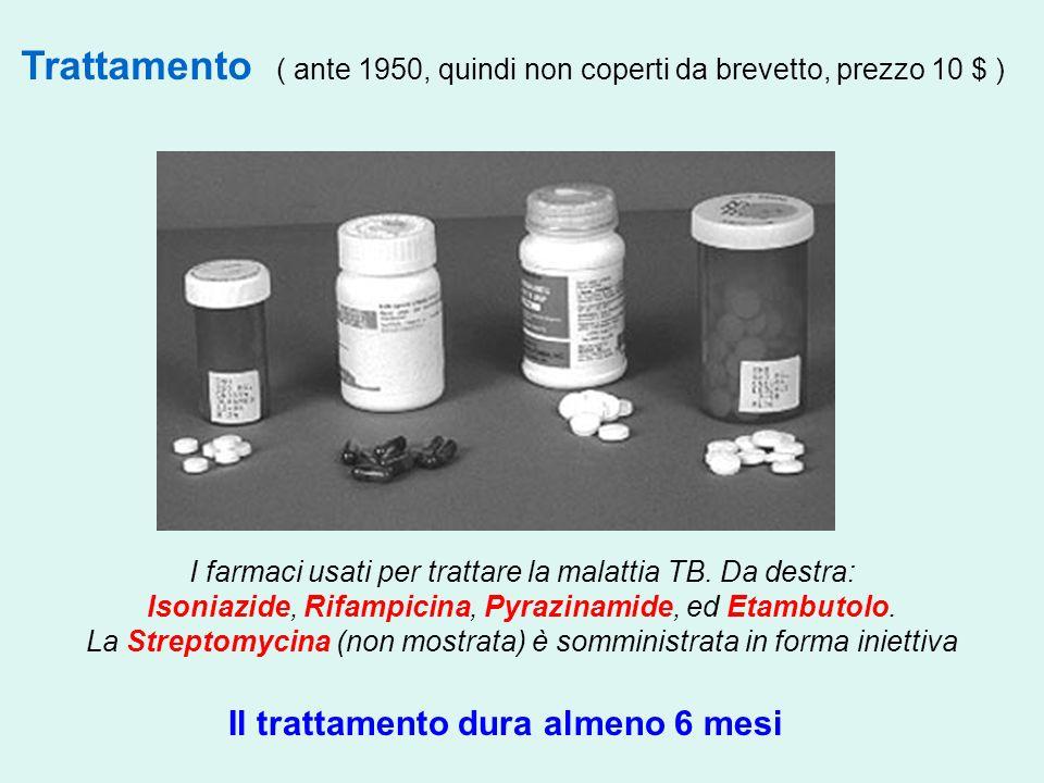 Trattamento ( ante 1950, quindi non coperti da brevetto, prezzo 10 $ ) I farmaci usati per trattare la malattia TB. Da destra: Isoniazide, Rifampicina