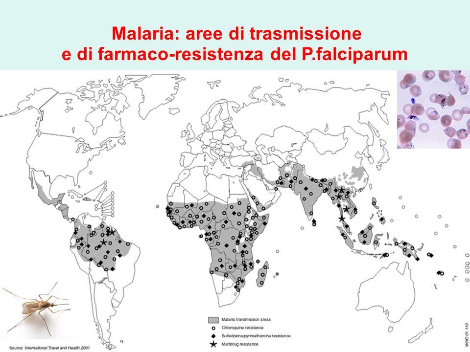 Malaria: aree di trasmissione e di farmaco-resistenza del P.falciparum