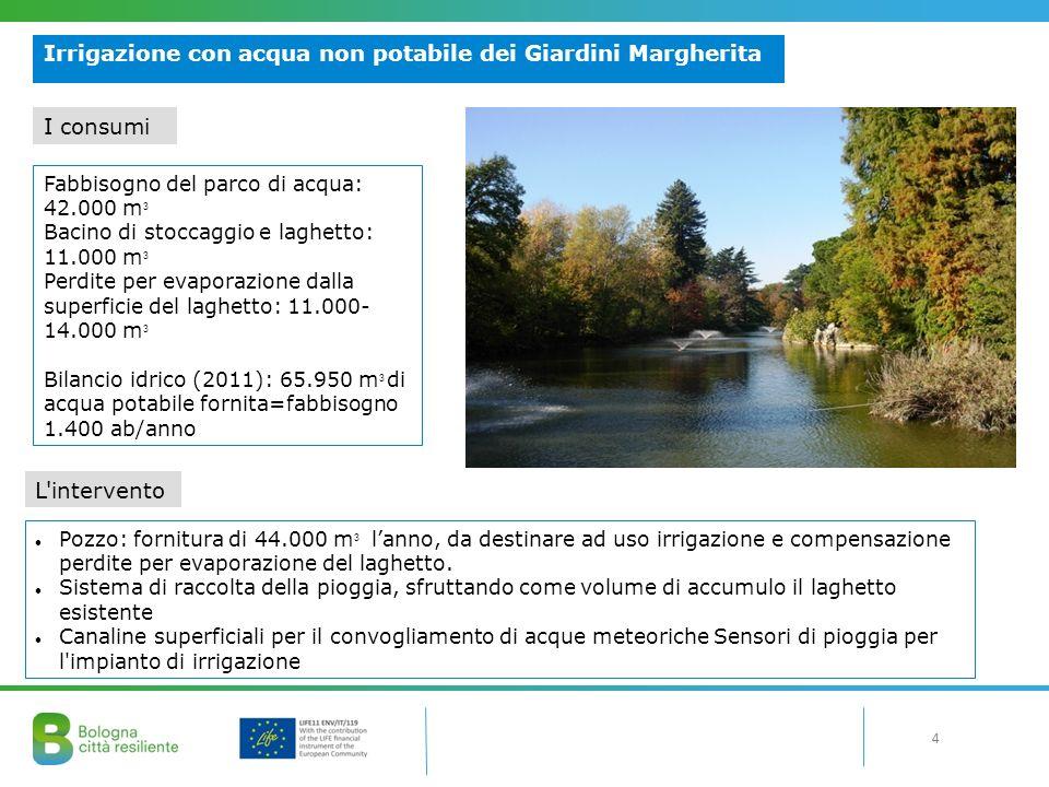 4 Irrigazione con acqua non potabile dei Giardini Margherita Pozzo: fornitura di 44.000 m 3 l'anno, da destinare ad uso irrigazione e compensazione perdite per evaporazione del laghetto.