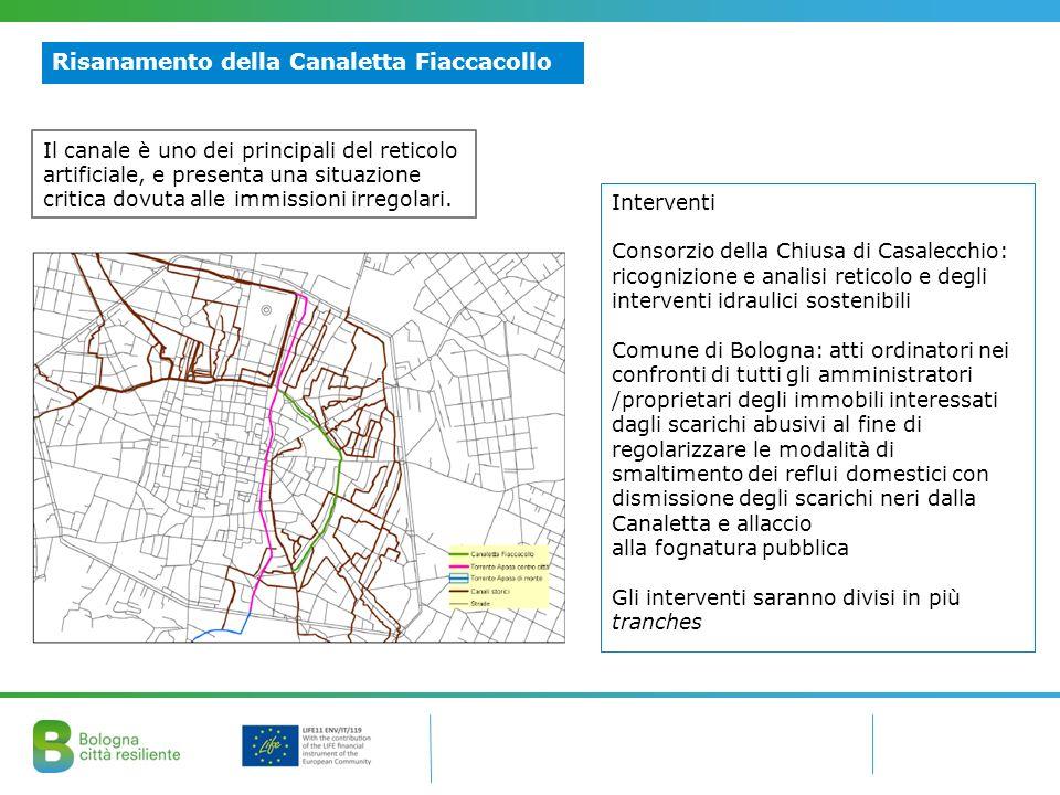 Risanamento della Canaletta Fiaccacollo Interventi Consorzio della Chiusa di Casalecchio: ricognizione e analisi reticolo e degli interventi idraulici