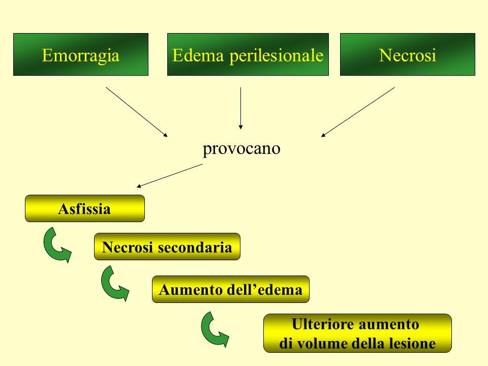 Edema perilesionaleEmorragiaNecrosi provocano Asfissia Necrosi secondaria Aumento dell'edema Ulteriore aumento di volume della lesione