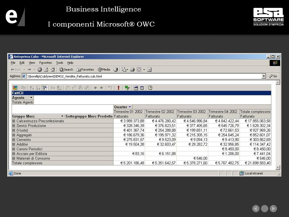 I componenti Microsoft® OWC Business Intelligence