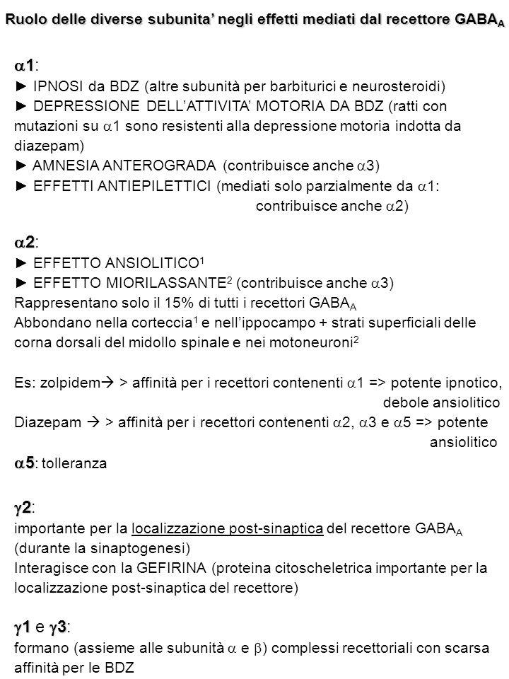 Ruolo delle diverse subunita' negli effetti mediati dal recettore GABA A  1  1: ► IPNOSI da BDZ (altre subunità per barbiturici e neurosteroidi) ► D