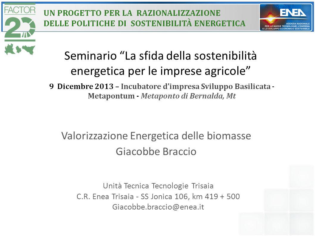 """Seminario """"La sfida della sostenibilità energetica per le imprese agricole"""" Valorizzazione Energetica delle biomasse Giacobbe Braccio Unità Tecnica Te"""