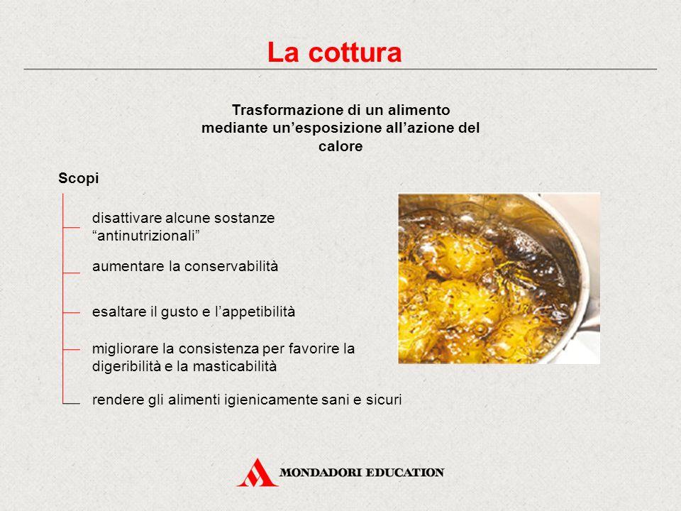 """La cottura Trasformazione di un alimento mediante un'esposizione all'azione del calore Scopi disattivare alcune sostanze """"antinutrizionali"""" aumentare"""