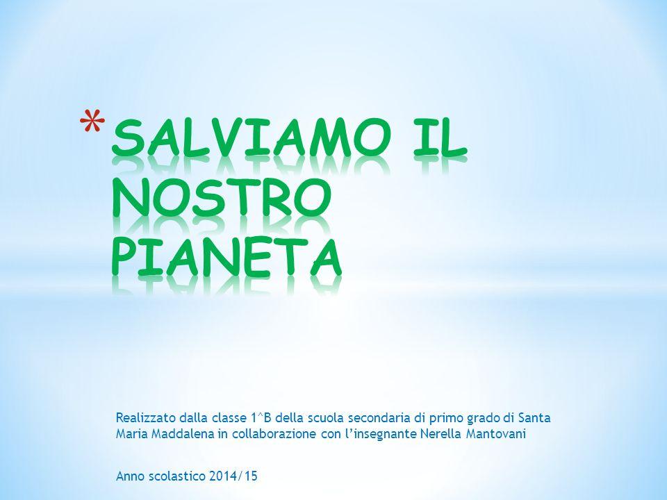 Realizzato dalla classe 1^B della scuola secondaria di primo grado di Santa Maria Maddalena in collaborazione con l'insegnante Nerella Mantovani Anno