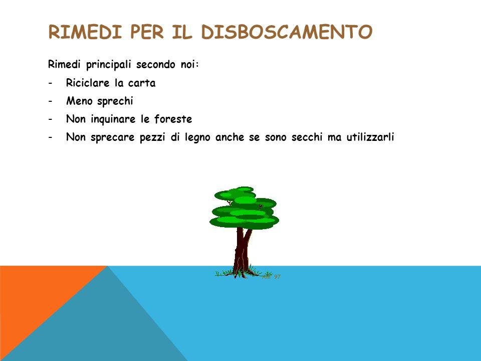 RIMEDI PER IL DISBOSCAMENTO Rimedi principali secondo noi: -Riciclare la carta -Meno sprechi -Non inquinare le foreste -Non sprecare pezzi di legno an