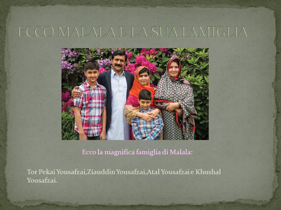 Ecco la magnifica famiglia di Malala: Tor Pekai Yousafzai,Ziauddin Yousafzai,Atal Yousafzai e Khushal Yousafzai.